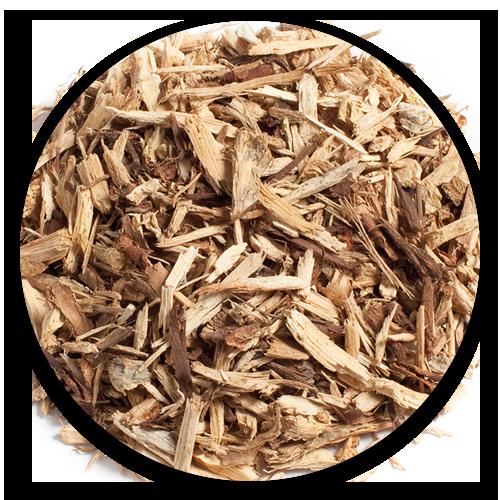 Cassava-Rhizome